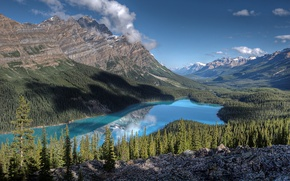 Картинка лес, небо, облака, деревья, горы, озеро