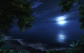 Картинка пляж, ночь, луна, море. романтика