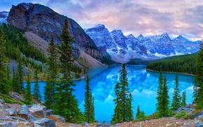 Картинка лес, деревья, горы, озеро, камни, скалы, Канада, Banff National Park, Canada, Банф, Moraine