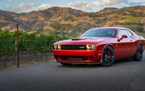 Картинка Dodge, Challenger, Red, Hellcat