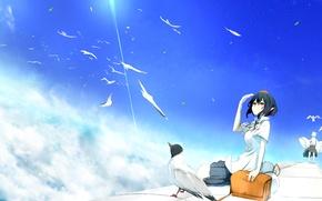 Картинка небо, облака, птицы, девушки, высота, арт, touhou, shameimaru aya, inubashiri momiji, yugeoryouki