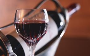 Обои красное вино, бутылка в держателе, бокал