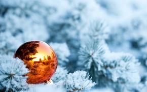 Картинка зима, снег, ветки, отражение, ель, шарик, ёлка, ёлочная игрушка