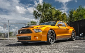 Обои Shelby, GT500, wide bodykit, muscle car, Super Snake, front, orange, Ultimate Auto, Vellano Wheels, Mustang, ...