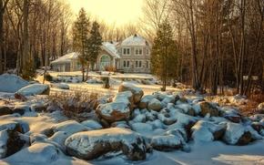 Картинка зима, природа, настроение