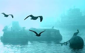 Обои птицы, туман, корабль, гавань