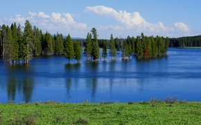 Картинка деревья, половодье, озеро, весна, небо, разлив, река, лес
