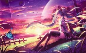 Картинка девушка, закат, озеро, бабочка, планеты, арт, vocaloid, hatsune miku, сидя, tidsean