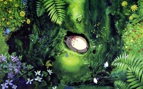 Картинка лес, листья, цветы, нора, девочка, лежит, Хаяо Миядзаки, Hayao Miyazaki, Tonari no Totoro, мой сосед …