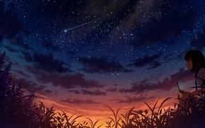 Обои девушка, ночь, метеор, арт, телефон, звездное небо, мобильник, sakais3211