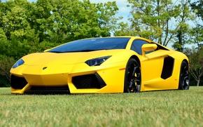 Картинка Lambo, yellow, aventador, lp700-4