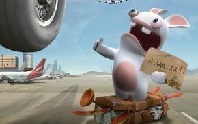 Картинка кролик, самолеты, автостоп, голосует