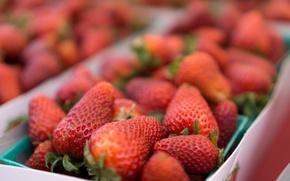 Картинка красное, клубника, фрукты