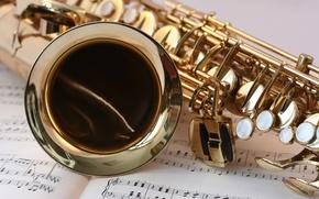 Картинка music, инструмент, gold, note, музыкальный, Saxophone, sheet music, instrument