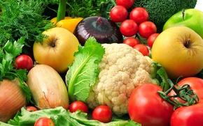 Обои укроп, овощи, салат, цветная капуста, баклажаны, зелень, фрукты, кинза, брокколи, яблоки, лук