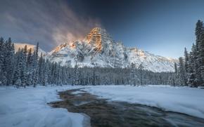 Картинка зима, лес, снег, река, Канада, Альберта, Национальный парк Банф, Гора Чефрен