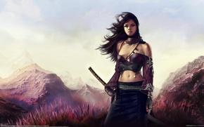 Картинка трава, девушка, пейзаж, горы, ветер, меч, катана, арт, aldo martinez calzadilla