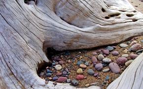 Обои песок, дерево, Камни