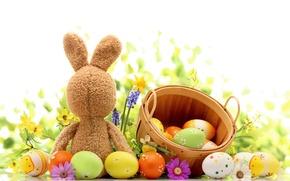 Картинка трава, цветы, яйца, весна, кролик, пасха, grass, flowers, нарциссы, spring, eggs, easter, bunny, daffodils