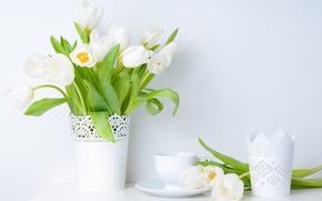Картинка ваза, цветы, чашка, белые, тюльпаны, блюдце, листья, весна