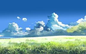 Обои лето, макото синкай, за облаками