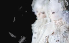Картинка отражение, кукла, перья, черный фон, белые волосы, doll, BJD