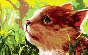 Картинка кошка, рисунок, трава, профиль