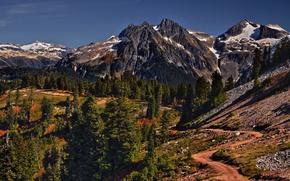 Картинка trees, nature, mountains, mountain path