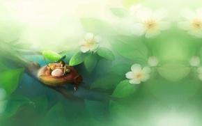 Картинка девушка, весна, аниме, помощь, арт, гнездо, забота, звёздочка
