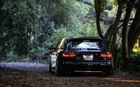 Картинка Audi, black, rear, wagon, stance, avant