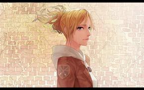 Картинка слезы, профиль, эмблема, кирпичная стена, Shingeki no Kyojin, Annie Leonhart, Вторжение гигантов