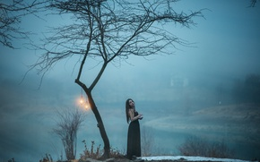 Картинка girl, dress, tree, fog, hair, lamps