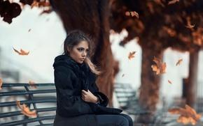 Картинка холод, листья, девушка, ветер, Alessandro Di Cicco, Cold Autumn