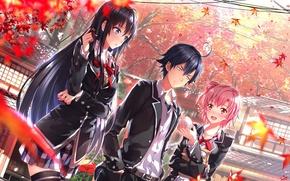 Обои scenic, арт, oregairu, Autumn, Юигахама Юи, yahari ore no seishun love come wa machigatteiru, Юкиносита ...