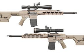 Картинка gun, weapon, rifles, telescopic lenses, Remington, remington, Remington R11 RSASS, Remigton Defence