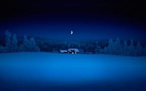 Обои лес, снег, ночь, месяц, домик