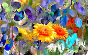 Картинка листья, линии, цветы, природа, краски, лепестки