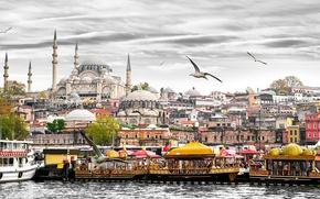 Картинка чайки, дома, лодки, башни, катера, Стамбул, Турция, дворец, причалы