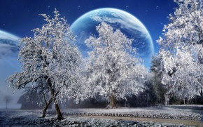 Обои зима, снег, деревья, планета