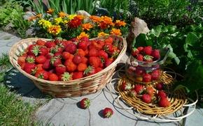 Обои лето, ягоды, корзина, клубника