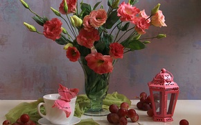 Обои цветы, натюрморт, лепестки