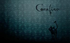 Картинка кот, надпись, мультфильм, жуки, страшная сказка, Coraline, Коралина, Коралайн