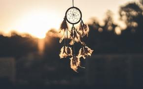 Картинка перья, снов, ловец