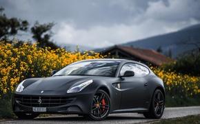 Картинка Черный, Феррари, Ferrari, Front, Black, Суперкар, Итальянский, Supercar, Italian