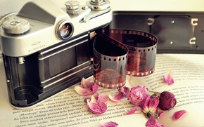 Картинка цветы, камера, лепестки, фотоаппарат, сухие, пленка, книга, фотопленка