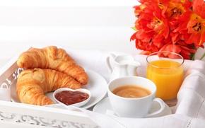 Обои цветы, чашка, сок, молоко, капучино, кофе, апельсиновый, тарелка, тюльпаны, круассаны, завтрак, рогалики, стакан, джем