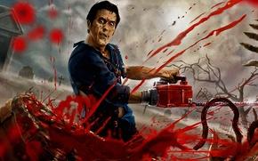 Картинка blood, ash, death, guts, chainsaw, evil dead