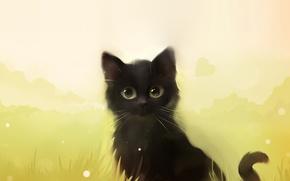 Картинка кошка, трава, кот, котенок, черный, арт, Apofiss