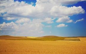 Картинка поле, небо, облака