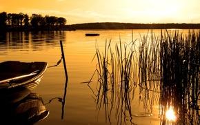 Картинка лес, закат, озеро, лодка, сепия